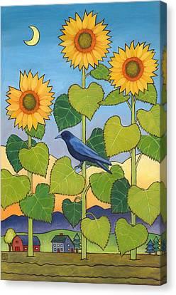 Sheris Sunflowers Canvas Print