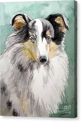Shetland Sheep Dog Canvas Print