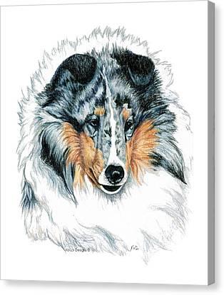 Shetland Sheepdog Canvas Print - Shetland Sheepdog, Sheltie, Blue Merle by Kathleen Sepulveda