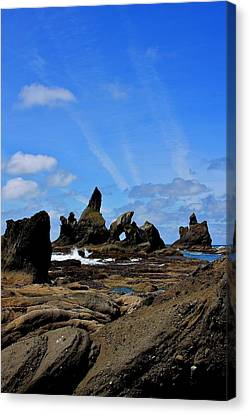 Shi Shi Beach 2 Canvas Print by Stacie Gary