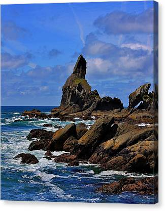 Shi Shi Beach Canvas Print by Stacie Gary