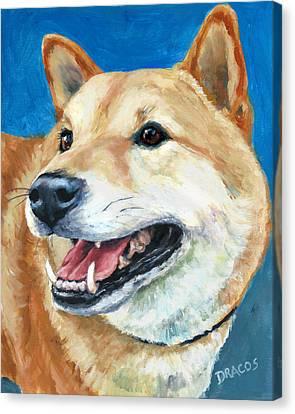 Shiba Inu On Blue Canvas Print