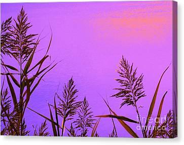 Shift In Perception Canvas Print