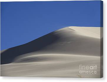 Shifting Dunes Canvas Print by Ron Hoggard