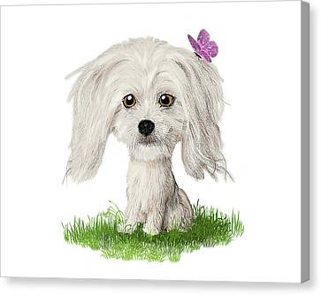 Shih Tzu Puppy With Butterfly Canvas Print by Susan Carter
