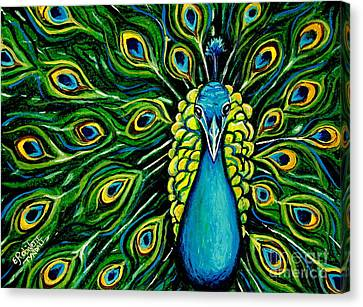 Shimmering Feathers Of A Peacock Canvas Print by Elizabeth Robinette Tyndall