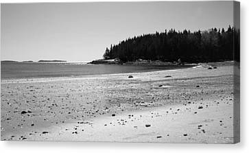 Canvas Print featuring the photograph Shimmering Sand by Corinne Rhode