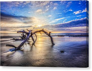 Shimmering Sands Canvas Print by Debra and Dave Vanderlaan