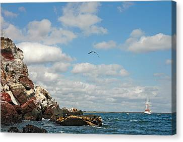 Ship Off Shore Canvas Print by Alan Lenk