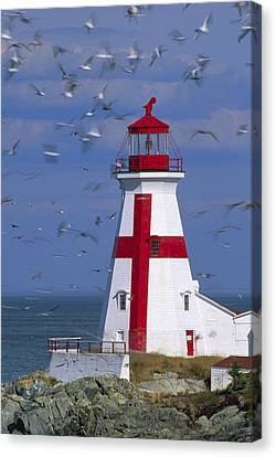 Quoddy Canvas Print - Ships Warning. by Eggers Photography