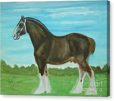 Shire Horse Canvas Print by Anna Folkartanna Maciejewska-Dyba