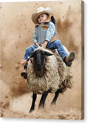 Shoot Low Sheriff They're Riding Sheep Canvas Print by Ron  McGinnis