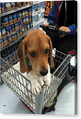 Shopping With Puppy  Canvas Print