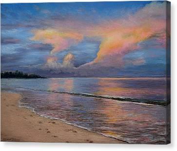 Shore Of Solitude Canvas Print by Susan Jenkins