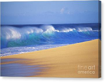 Shorebreak Waves Canvas Print by Ali ONeal - Printscapes