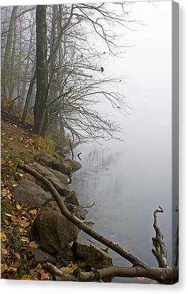 Canvas Print featuring the photograph Shoreline by Alan Raasch