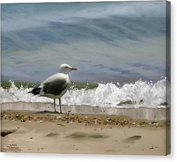 Shoreline Breeze Canvas Print by Linda Tenukas