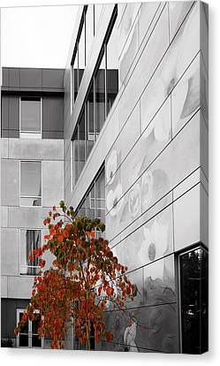Shoreline City Hall Canvas Print by Mary Jo Allen