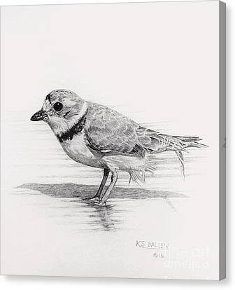 Shoreline Stroll Canvas Print