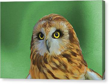 Short Eared Owl On Green Canvas Print by Dan Sproul