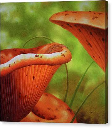 Shortcut To Mushrooms Canvas Print