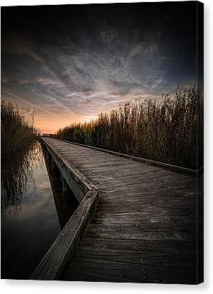 Shoveler Boardwalk Canvas Print by Allen Biedrzycki