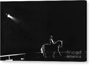Show Horse Canvas Print by Jim Wright
