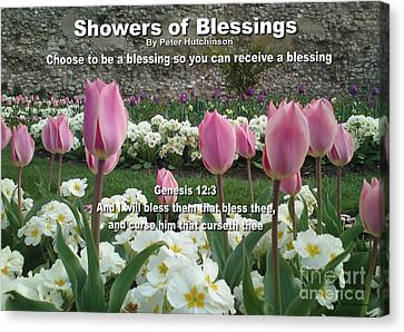 Showers Of Blessings Canvas Print