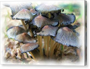 Shroom Family Canvas Print by Dottie Dees