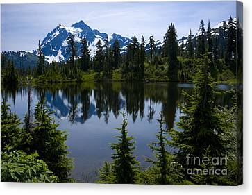 Shuksan In Spring Canvas Print by Idaho Scenic Images Linda Lantzy