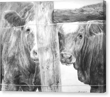 Canvas Print featuring the drawing Shy Guys by Meagan  Visser
