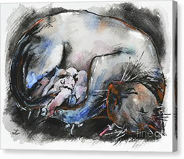 Canvas Print featuring the painting Siamese Cat With Kittens by Zaira Dzhaubaeva