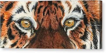 Sib Tig Eye Canvas Print by Laurie Bath
