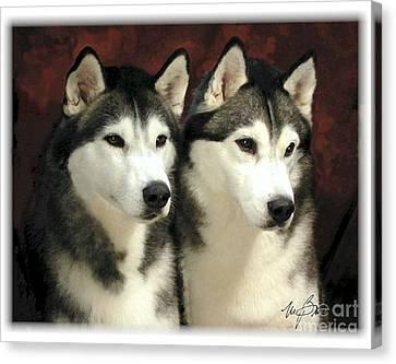 Siberian Huskies Related Canvas Print by Maxine Bochnia