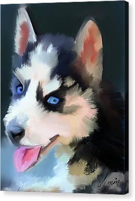Siberian Husky Puppy Canvas Print by Armin Sabanovic
