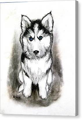 Siberian Husky Puppy Canvas Print