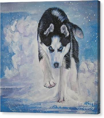 Siberian Husky Run Canvas Print by Lee Ann Shepard