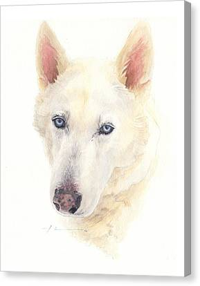 Siberian Husky Watercolor Portrait Canvas Print