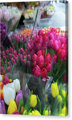 Canvas Print featuring the photograph Sidewalk Flowers by Lora Lee Chapman