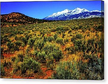 Sierra Blanca Canvas Print