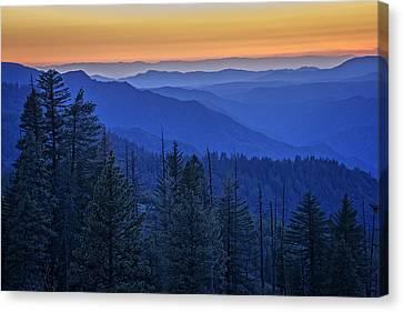 Sierra Fire Canvas Print by Rick Berk