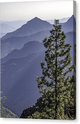 Canvas Print featuring the photograph Sierra Nevada Foothills by Steven Sparks