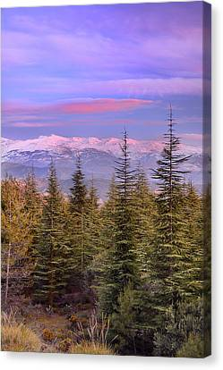 Sunset Canvas Print - Sierra Nevada National Park At Sunset by Guido Montanes Castillo