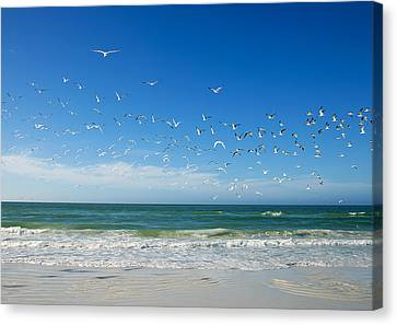 Siesta Key Canvas Print by Gouzel -