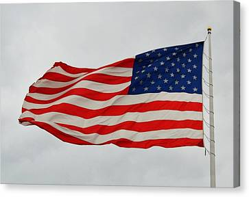 Sign Of Freedom Canvas Print