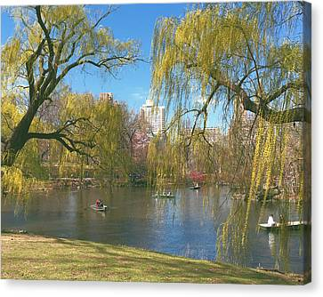 Signs Of Spring In Central Park 2 Canvas Print by Muriel Levison Goodwin