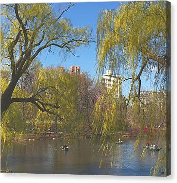 Signs Of Spring In Central Park 4 Canvas Print by Muriel Levison Goodwin