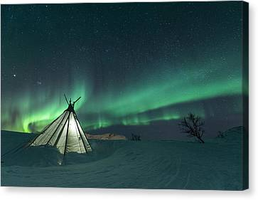 Winter Light Canvas Print - Sikka by Tor-Ivar Naess