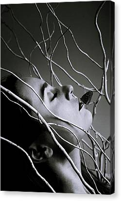 Beautiful Woman Face Canvas Print - Silence by Cambion Art