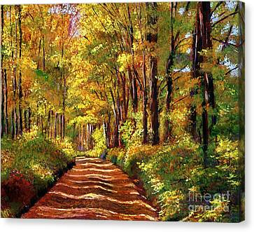 New England Autumn Canvas Print - Silence Is Golden by David Lloyd Glover